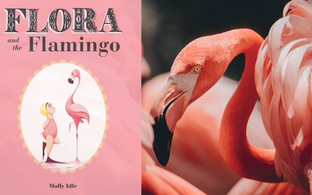 Flora and the Flamingo by Molly Idle | Book Review